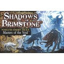 Masters of the Void: Shadows of Brimstone