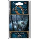 The Drowned Ruins: The Lord of the Rings LCG