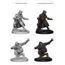 Pathfinder Deep Cuts Unpainted Miniatures - Human Male Rogue (2 Units)