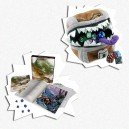 BUNDLE STARTER MIMIC D&D 5a Ed.: Starter Set + Mimic Gamer Pouch
