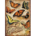 Backyard Butterflies - Cobble Hill Puzzle 500 Pz.