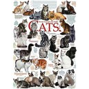 Cat Quotes - Cobble Hill Puzzle 1000 Pz.