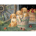 Puppy Pail - Cobble Hill Puzzle 400 Pz.