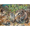 Raccoon Family - Cobble Hill Puzzle 350 Pz.