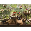Terrarium Cat - Cobble Hill Puzzle 1000 Pz.